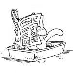 Aprende a fabricar tu propia arena para gatos casera